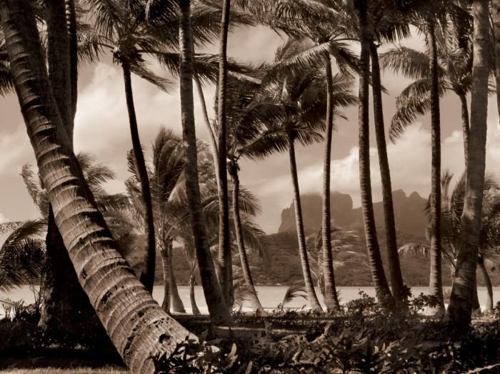 françois-nars, faery-lands-tahiti, rizzoli, photo-book, giovanni-bianco, motu-tané, tahiti, bora-bora, french-polynesia